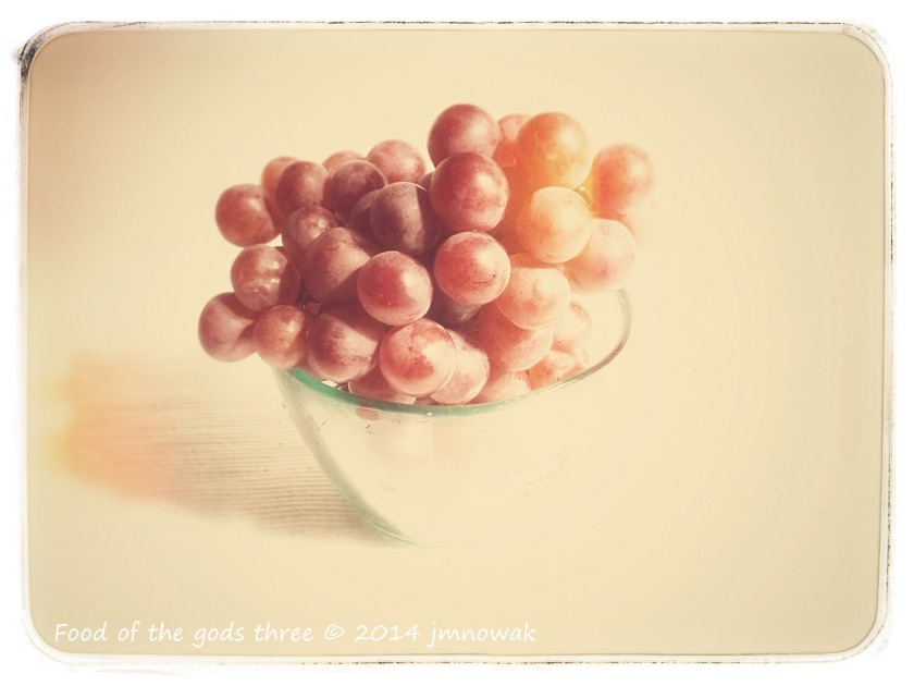 grapes red photo