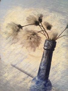 picsketch bog cotton closeup