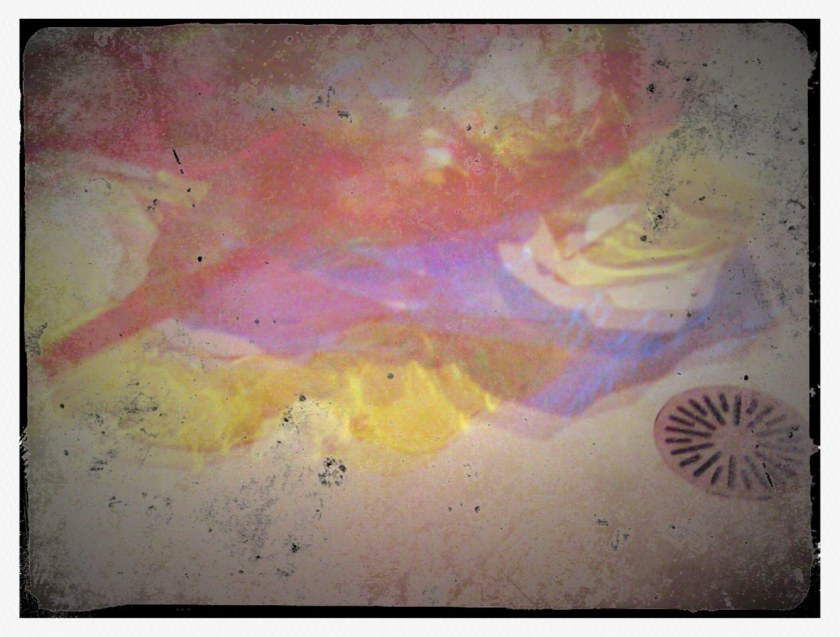 Colours reflected. PicturesLab.