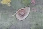 begonia bud industrializer