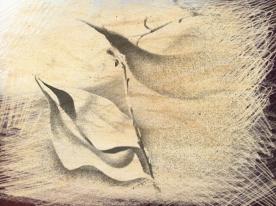 Leaf duo + shadow. PicSketch.