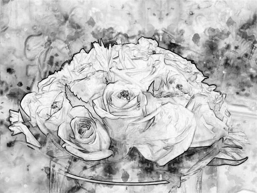 Posy of roses. SketchCamera.
