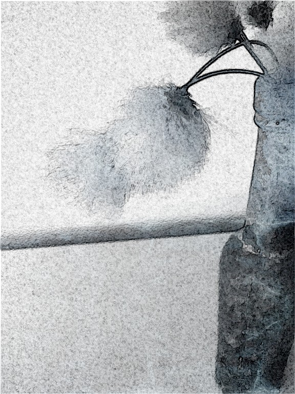bog cotton marble mono