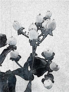 berries marble mono