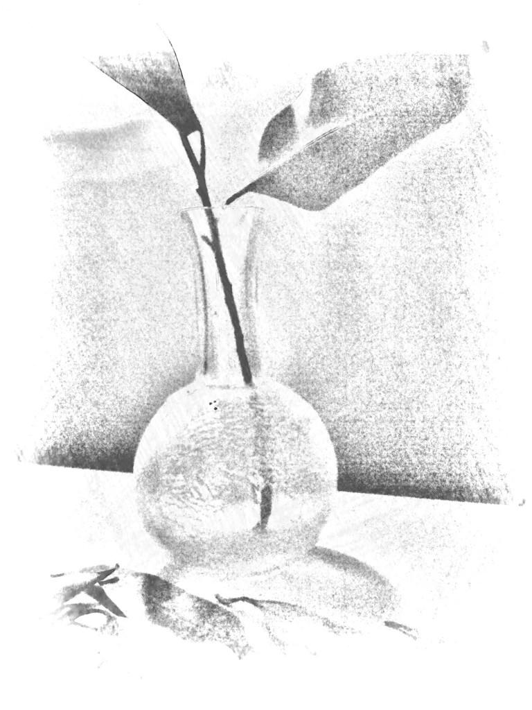 Leaf + vase. PicSketch.