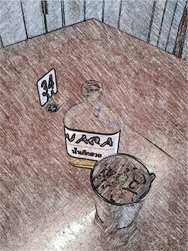 Nara. SketchCamera.