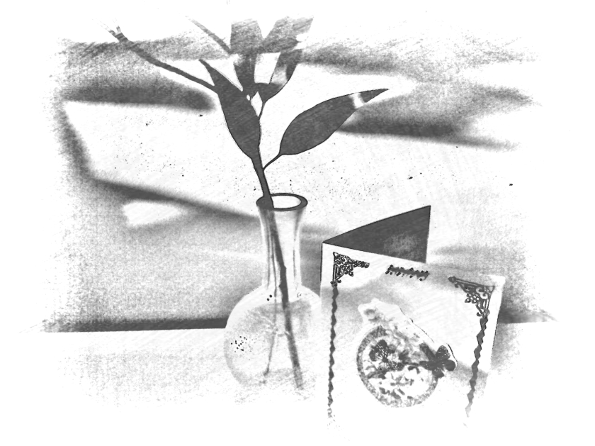Leaves in glass vase with greeting card. PicSketch. Two views.