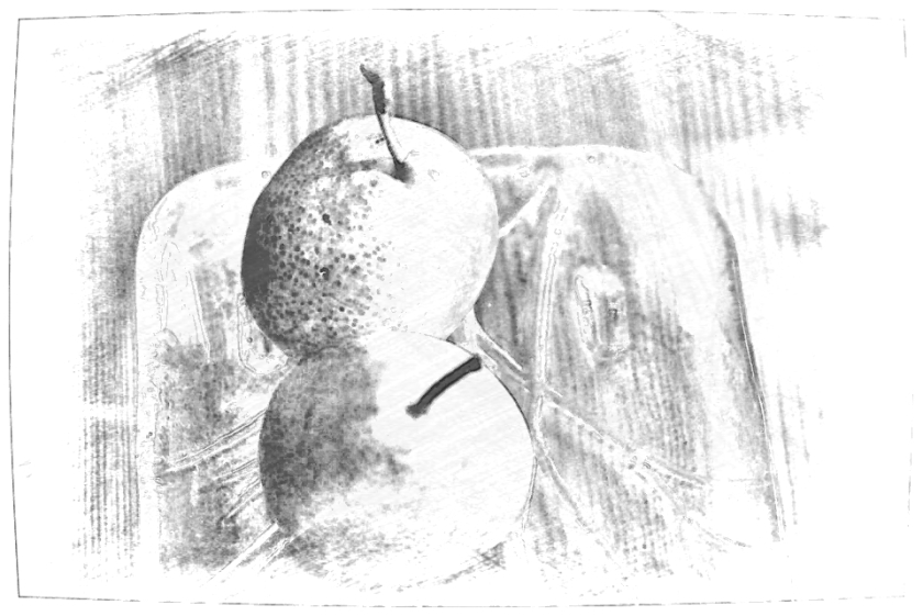 Pear duo. PicSketch.