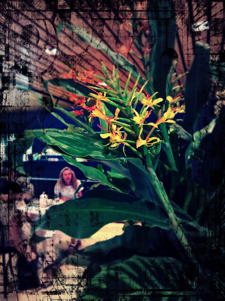 FhotPixlrRES-Flowers