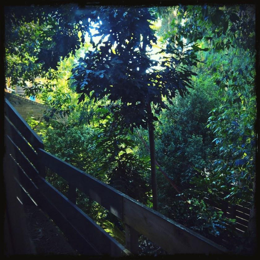 FhotPixlrRES-GardenView