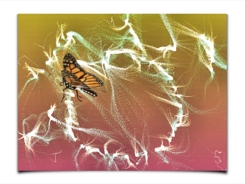 FantPaint-ButterflyBor
